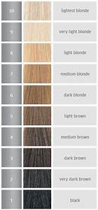 Wella Colour Chart Brown Haircolor Levels Peroxide Developer Lighteners Of Hair