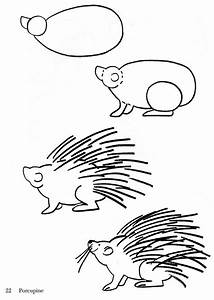 Simple Porcupine Drawing | www.imgkid.com - The Image Kid ...