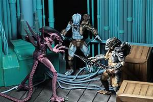 Alien vs Predator (Arcade Appearance) – 7″ Scale Action
