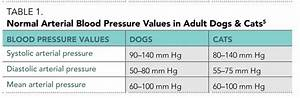 Blood Pressure Monitoring From A Nursing Perspective Part