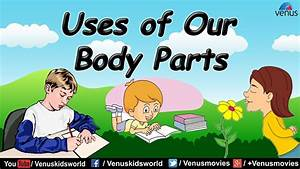Uses Of Our Body Parts