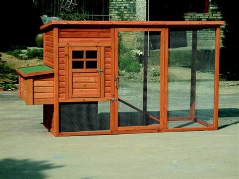 Backyard Poultry Made Easy