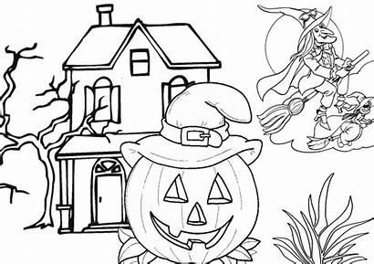 Coloring Witches Pumpkins Halloween Flying Tsgos Elsa