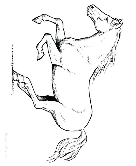 Printable Horses Coloring Pages Printable Coloring Pages Newmarevpower