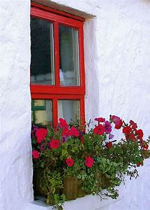 Petite Araignée Rouge Rebord Fenetre : cottage window door window porch window box flowers ~ Nature-et-papiers.com Idées de Décoration