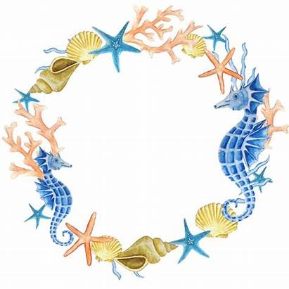 Sea Wreath Watercolor Clipart Clip Ocean Shell