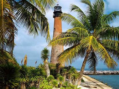 Florida Desktop State Wallpapers Nature Miami Wallpapersafari