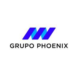 grupo phoenix crunchbase
