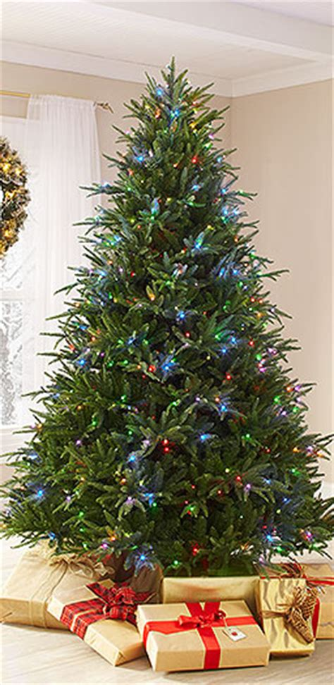 fake christmas trees massachusetts best template collection