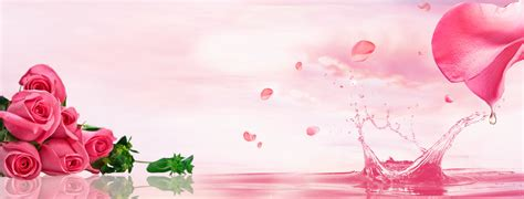 Pink Roses Background Pink Roses Series Cosmetics Background Pink
