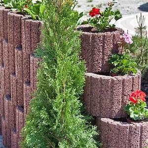 Blumen Für Sonnigen Standort : pflanzringe setzen 20 tipps f r terrassierte ~ Michelbontemps.com Haus und Dekorationen