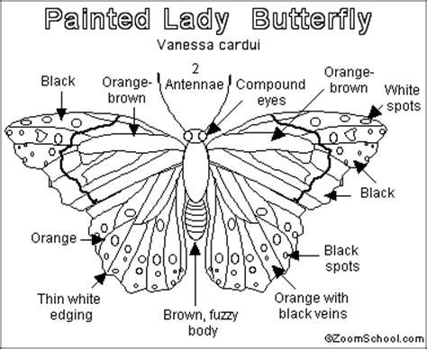 painted lady butterfly printout enchantedlearningcom