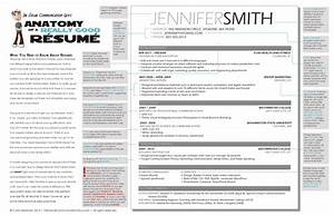 The anatomy of a really good resume a good resume example for Examples of really good resumes