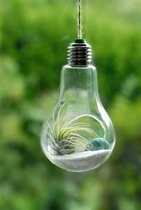 17 Light Bulb Terrarium Diy Ideas