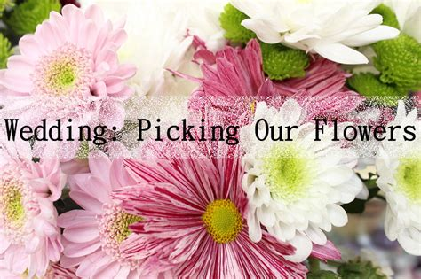 choosing  wedding flowers kimberley sarah