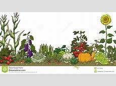 Background clipart vegetable garden Pencil and in color