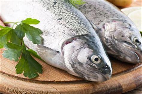 fish  eat  weight loss