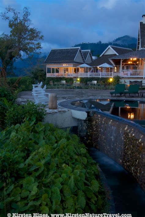 strawberry hill resort jamaica hotels nature writing photography by kirsten hines