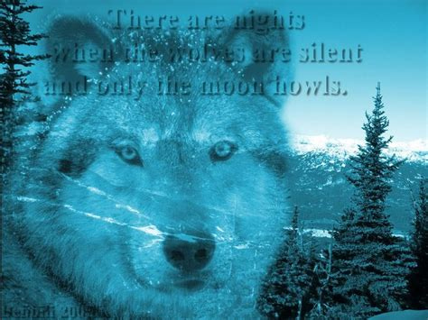 Cool Wolf Sayings