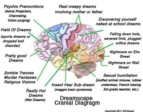 dream interpretation offers rare opportunity the