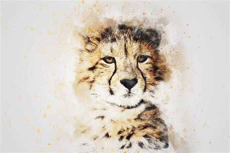leopard tier kunst kostenloses bild auf pixabay