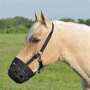 Cashel Grazing Muzzle Halter EquestrianCollections