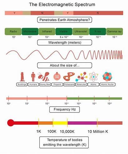 Worksheet Spectrum Electromagnetic Waves Properties Diagram Key