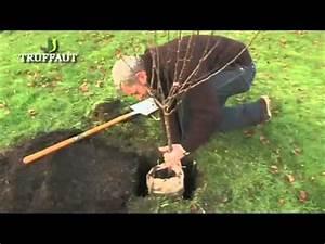 Quand Planter Un Pommier : comment planter un pommier ~ Dallasstarsshop.com Idées de Décoration
