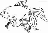 Goldfish Fish Coloring Template Drawings Printable Cool2bkids Getcolorings Cracker sketch template