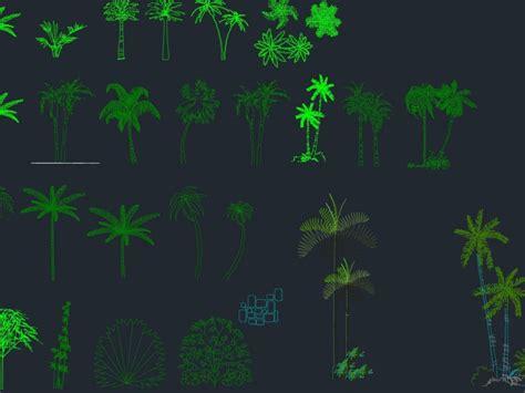palm tree cad block  dwg elevation  autocad designs cad