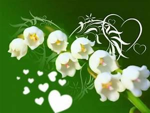 fete 1er mai With affiche chambre bébé avec bouquet de fleurs muguet
