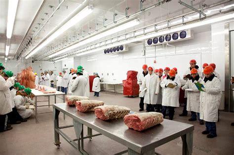 animal  food sciences animal  food sciences ttu