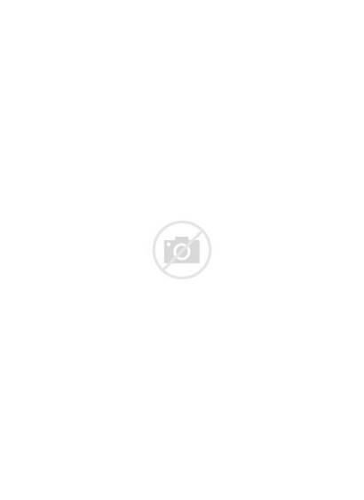 Gymnastics Beam Balance Vector Character Athletes Athlete