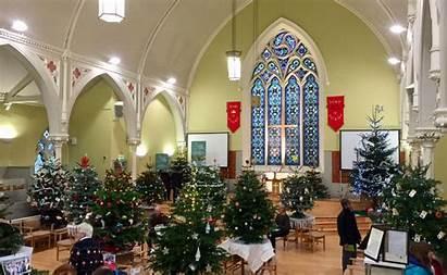 Christmas Church Trees Glasgow Festival Tree Decorated