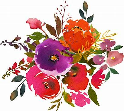 Watercolor Flower Transparent Painting Hand Clipart Floral