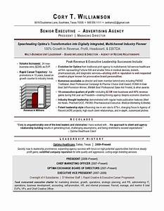 mercial Real Estate Resume Examples