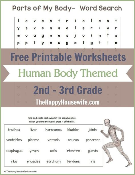 human body themed worksheets free printables homeschool