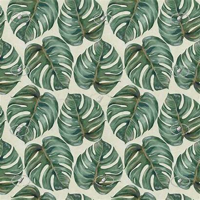 Seamless Tropical Texture Leaves Textures Patterns Materials