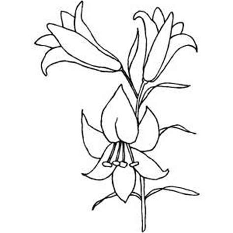 Azuzena Flower Template by Easter Lily Coloring Page