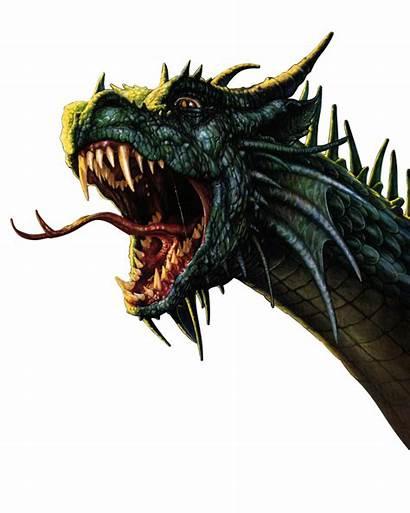Dragon Transparent Fantasia Dragons Transparente Imagenes Fantasy