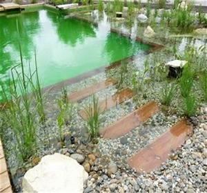 Construction Piscine Naturelle : piscine naturelle prix infos pour bien la faire construire ~ Melissatoandfro.com Idées de Décoration