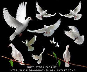 clipart religiose raccolta di immagini religiose 2 0 parte seconda