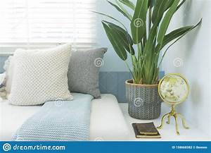 White, Sofa, With, Side, Green, Plant, Pot, In, A, Home, Stock, Photo