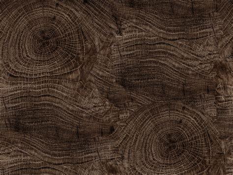 wood effect bathroom wallpaper life lines  walldeco