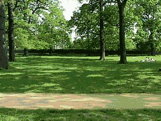 earth views england london richmond park views londres