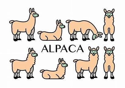 Vector Alpaca Icons Clipart Edit