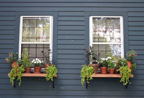Window Potted Plants by Outdoor Window Shelves Always Thinking Outside
