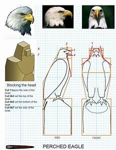 43 best images about Eagle wood carving ideas on Pinterest