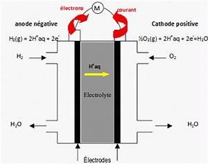 Fonctionnement Pile à Combustible : piles combustibles biocarburant concours caplp interne 2010 ~ Medecine-chirurgie-esthetiques.com Avis de Voitures