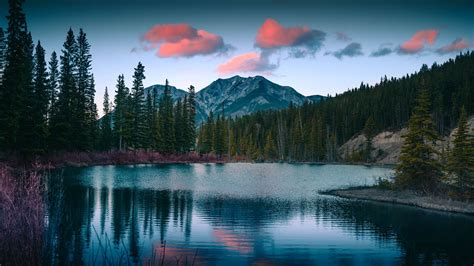 wallpaper  lake mountains forest